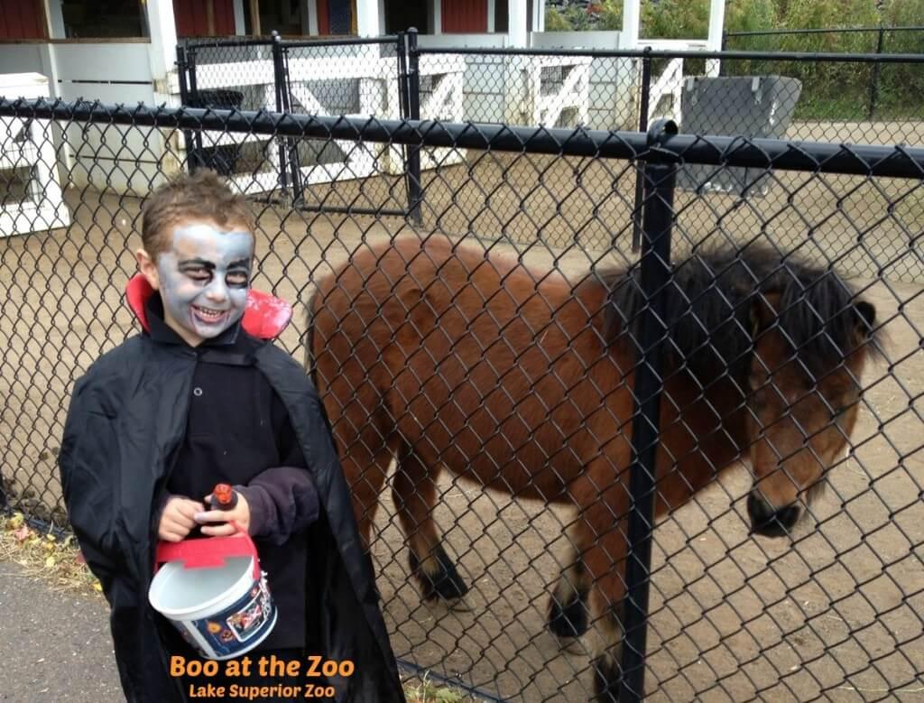 Boo at the Zoo - Lake Superior Zoo